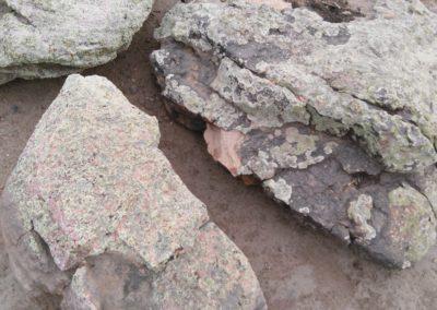 boulders_moss_rock_boulder-1